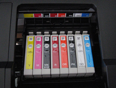 Epson stylus photo r1900 print head inkjet printer printhead cartridges installed